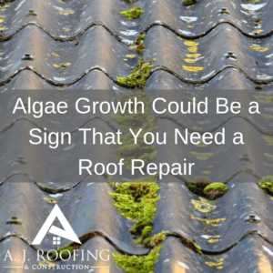 Algea-Growth-A.J.-Roofing-Construction