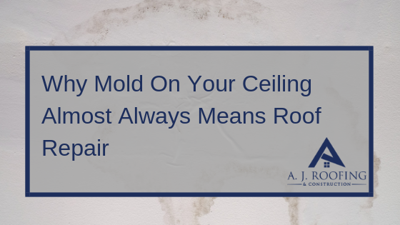 Mold on the Ceiling From a Roof Leak: Why You Need Residential Roof Repair Immediately